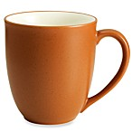 Noritake® Colorwave Terra Cotta 12-Ounce Mug