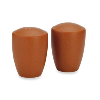 Noritake® Colorwave Salt and Pepper Shakers in Terra Cotta