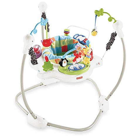 Fisher-Price Discover 'n Grow™ Jumperoo™