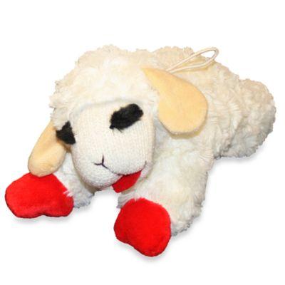 10 Pet Toy