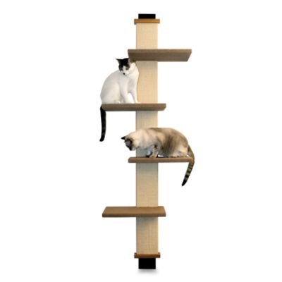 SmartCat Pet Home Solutions