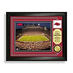 Donald W. Reynolds Razorback Stadium Minted Team Medallion Photo Mint Frame