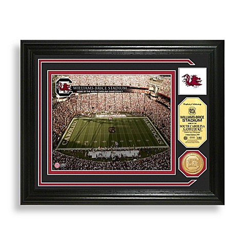 Williams-Brice Stadium Minted Team Medallion Photo Mint Frame