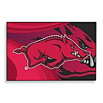 University of Arkansas Tufted Acrylic Rug