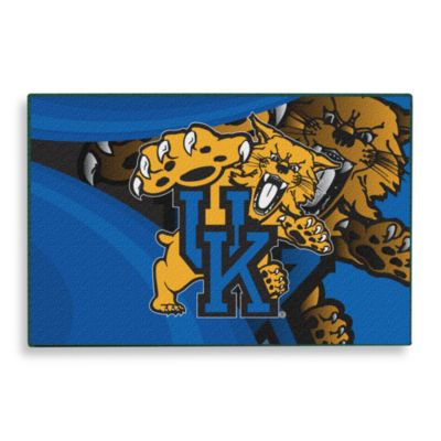 University of Kentucky Tufted Acrylic Rug