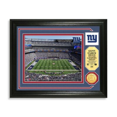 New York Giants Minted Team Medallion Photo Mint