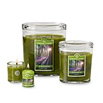 Colonial Candle® Spring Awakening Scented Candles