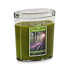 Colonial Candle® Spring Awakening Scented Candle in 22-Ounce Oval Jar Candle