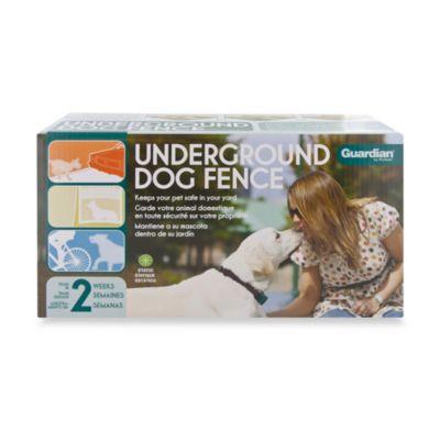 Guardian® Underground Fence®