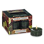 Yankee Candle® Pinecone & Lime Scented Tea Light Accent Candles (Box of 12)