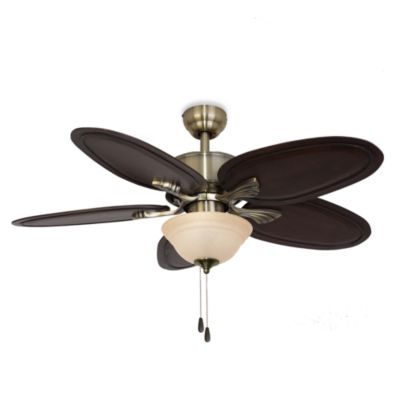 52-Inch Punta Cana Bowl Light Ceiling Fan