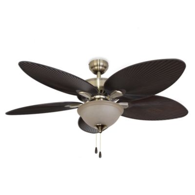 52-Inch Coconut Grove Bowl Light Aged Brass Ceiling Fan