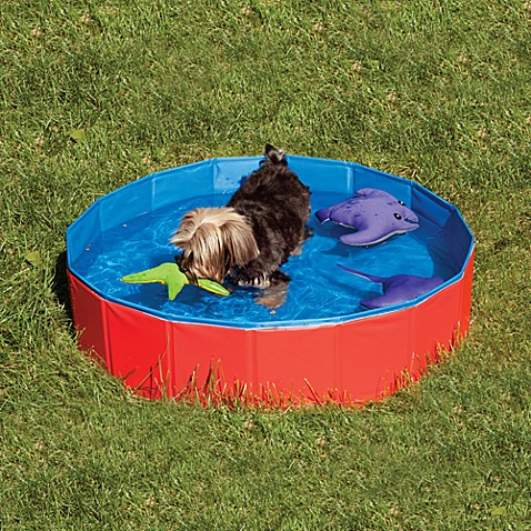 Spot® Cool Pool for Dogs