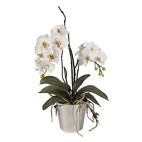 Faux Phalaenopsis in Tin Bucket