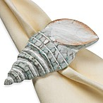 Turban Shell Napkin Ring in Aqua
