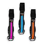 SafetyGlo™ Small LED Pet Collars