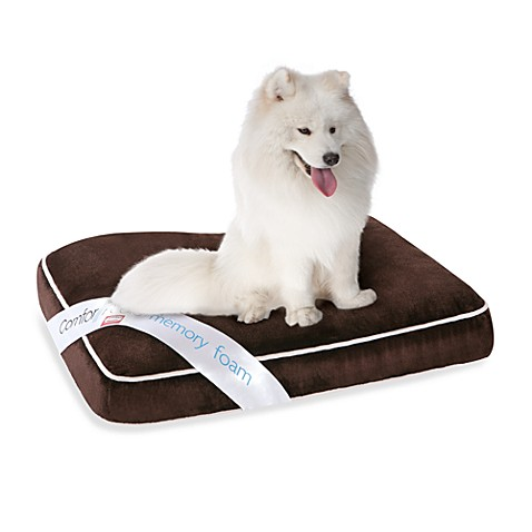 Simmons® ComforPedic™ Chocolate Deluxe Orthopedic Napper - Large