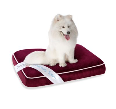 Simmons® ComforPedic™ Deluxe Orthopedic Nappers in Red