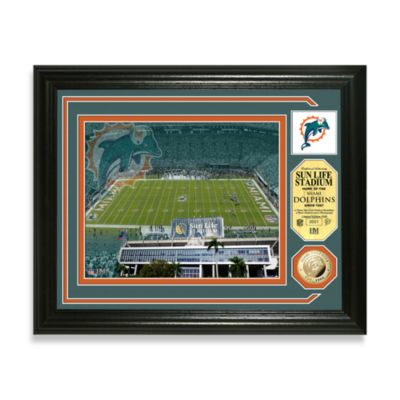 Miami Dolphins Single Coin Photo Mint