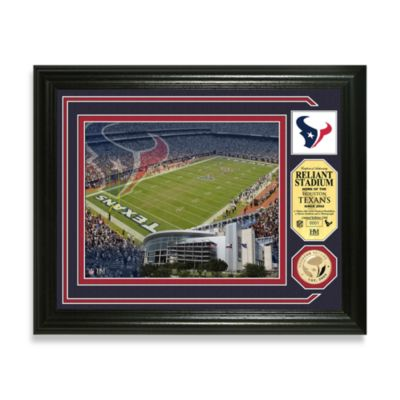 Houston Texans Single Coin Photo Mint