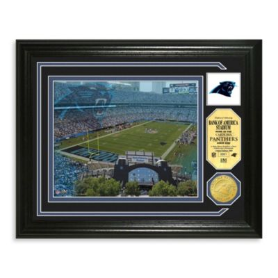 Carolina Panthers Single Coin Photo Mint