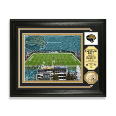 Jacksonville Jaguars Single Coin Photo Mint