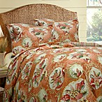 Shell Key 3-4 Piece Comforter Set