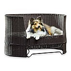The Refined Canine™Indoor/Outdoor Dog Day Bed with Outdoor Cushion