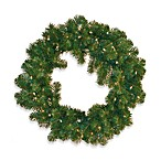 Colorado Pine 24 Inch Pre-Lit Wreath with Clear Lights