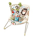 Fisher Price® Comfy Time Bouncer