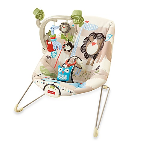 Fisher-Price® Comfy Time Bouncer