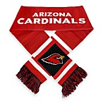 Arizona Cardinals Stripe Scarf