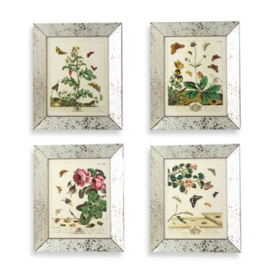 Reflections Set of Four 11-Inch x 14-Inch in Butterfly Prints