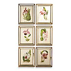 Six Orchid Prints Wall Art in Mirror And Gold Frame