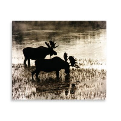Water Moose 16-Inch x 20-Inch Printed Canvas