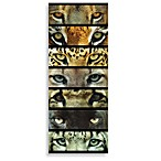 Cat Eyes 30-Inch x 12-Inch Printed Canvas