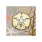 Sand Dollar Canvas Wall Art