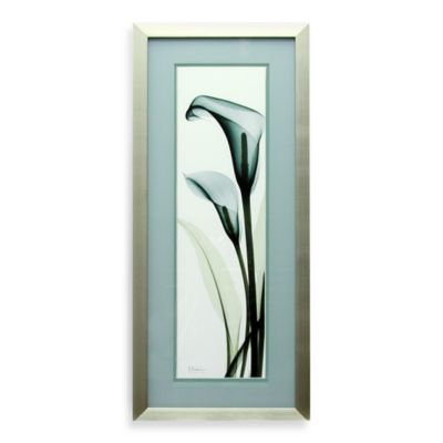 X-Ray Teal Calla Lily Wall Art