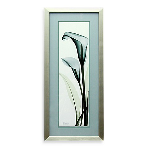 X Ray Teal Calla Lily Wall Art Bed Bath Beyond