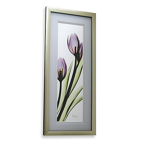 Bending Tulip Close Up 14-Inch x 32-Inch Wall Art