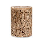 Safavieh Canyon Teak Round Stool