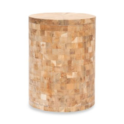 Safavieh Tioga Reclaimed Teak Stool in Maple Color Finish