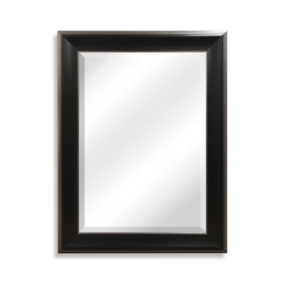 22.5-Inch x 28.5-Inch Wall Mirror with Brushed Nickel in Black