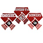 NCAA Team Stripe Scarf