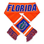 University of Florida Team Stripe Scarf