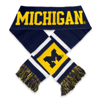 University of Michigan Team Stripe Scarf