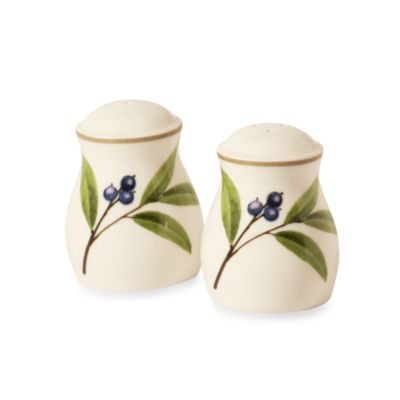 Noritake® Berries & Brambles 2 1/2-Inch Salt and Pepper Shakers