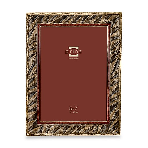 Prinz Passages 5-Inch x 7-Inch Metal Frame in Zebra