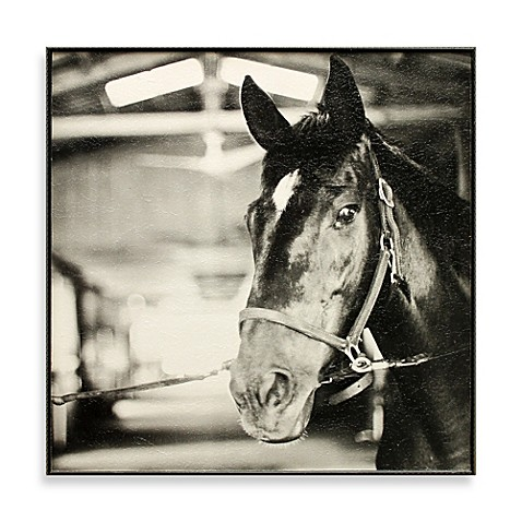 Derby Square I 13-Inch x 13-Inch Horse Photo Art
