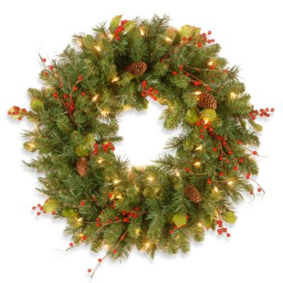 National Tree Classical Collection 24-Inch Pre-Lit Wreath with Berries and 50 Clear Lights